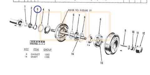 Rear Wheel Bearing Race